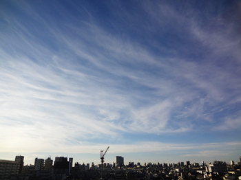 2018.1.7*朝の空*32-389.8.jpg