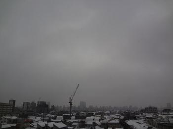 2018.2.2*早朝・雪*32-389.8.jpg