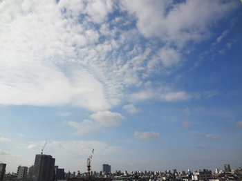 2018.8.11*朝の空*30-342.5.jpg