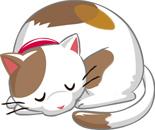2019.6.1*眠い猫*72-59.jpg