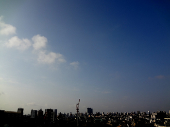 30日の早朝*いいお天気です*28-298.jpg
