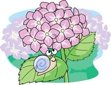 5.27*紫陽花とカタツムリ*50-105.jpg