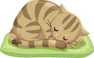 6.16*眠り猫*60-65.1.jpg