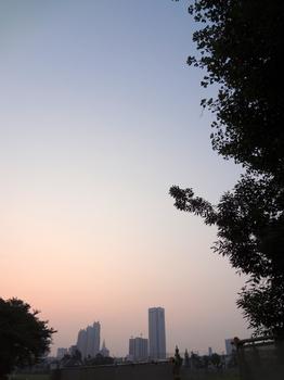 8.12*朝の新宿*4:46*51.2.jpg