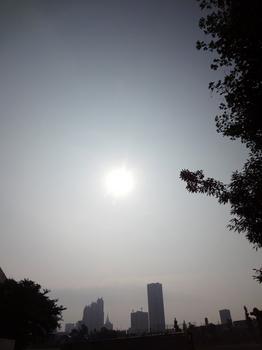 8.13*朝の新宿*7:26*51.2.jpg
