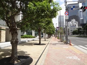 8.31*新宿-1-51.2.jpg
