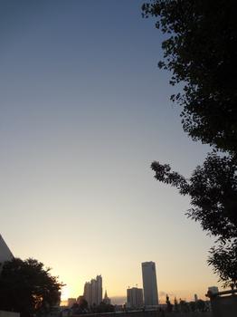 8.31*朝の新宿*5:26*51.2.jpg