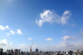8.7*立秋*の朝*30-301.jpg