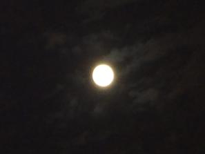 9.13*中秋の名月*35.2-194.0.jpg