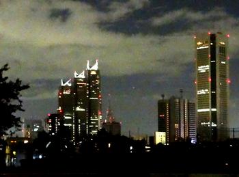 9.28*夜の新宿**横*66.5.jpg