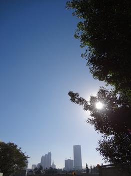 9.28*朝の新宿*51.2.jpg