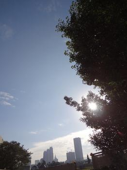 9.30*朝の新宿*51.2.jpg