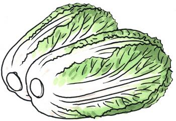 9.30*白菜*221.jpg