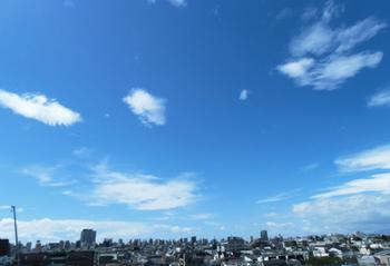 9.8*朝の空*6.5-347.3.jpg