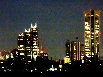 新宿夜景*35.1-238.1.jpg