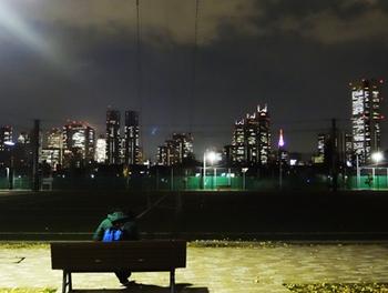 新宿夜景-1*33.75-342.0.jpg