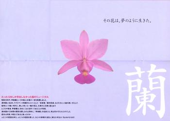 李香蘭-4*58.jpg