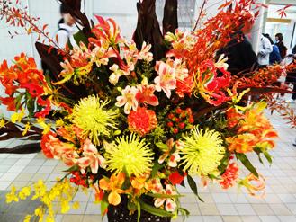 燃える様な花*28.5-238.1.jpg